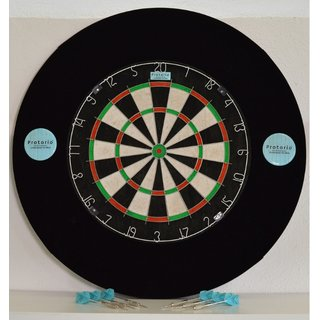 Sisal Bristle Dartboard Set with Catchring